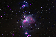 M42 (The Great Orion Nebula)